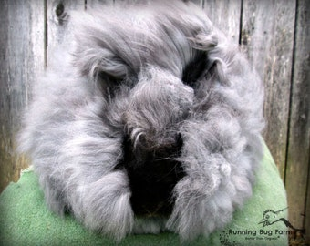 Angora Fiber Black Rabbit Wool Natural English Angora Rabbit Spinning Fiber Fur Hair No Fillers Cruelty Free Eco Wool from Doodle 1 Ounce