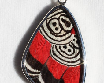 Cramers 88 Large Butterfly Wing Pendant