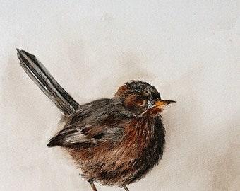 Pen and ink Bird Wall art bird PRINT Bird Print Bird art Print watercolor painting bird illustration Woodland Art print home decor 8x10 draw