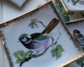 4 Decorative Bird Plates * Small Colorful Bird Dishes * Holiday and Gifts * Set of Four Wall Plates *
