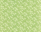 WINTER SALE - Hello Darling - 1 Yard - Dainty in Green (55117-25) - Bonnie and Camille for Moda Fabrics