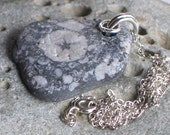 Natural Surf Tumbled Fossil Pendant Sterling Silver Necklace (690)