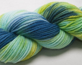 Hand dyed yarn Bluefaced Leicester BFL Hand painted DK yarn 100g skein Zinger