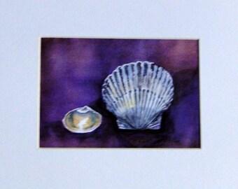 Seashells - a Print of an Original Watercolor in a White Mat - 8 x 10