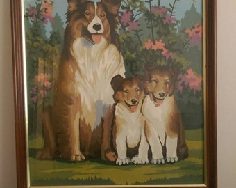 """Vintage Paint by Numbers Collie Family.  Framed 21.5"""" x 17.5""""."""