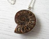 Black Friday SALE - Chocolate Amber Brown Ammonite Fossil Pendant