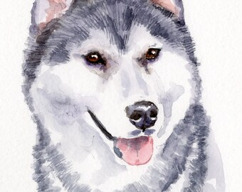 SIBERIAN HUSKY II Original Watercolor Double Matted 8x10 Ready to Frame