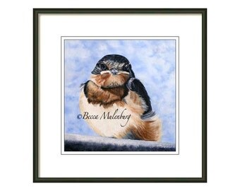 bird art S/N LIMITED EDITION PRINT barn swallow wildlife realism nature