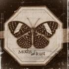 mothsandrustshop