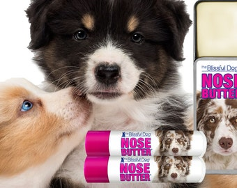 Australian Shepherd NOSE BUTTER® Little Sniff Combo for Dry Dog Noses .50 oz slide tin &  2-.15 oz tubes with Choice of 4 Color Aussie Label