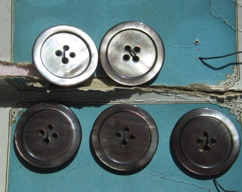 Five Vintage Ocean Pearl Buttons. Silvery Gray on Original Card. Estate Find