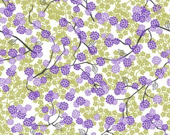 Bloom by CP Design for Studio E Cotton Fabric 1.75 Yard