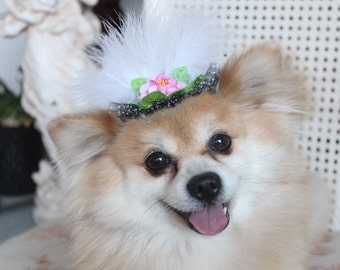 Cute black     color  mini  hat with   feather and   flowers for dog or cat
