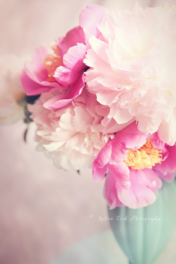 Peony photograph, pink peonies, spring home decor, floral photography, pastel photograph, pink, aqua,flowers,Shabby chic decor