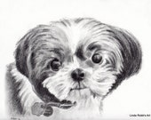RESERVED Custom Dog Pet Portrait Graphite Pencil 8x10