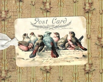 Tags, Vintage Style, Bird Tags, All Occasion Tags, Blue Bird, Postcard Tags