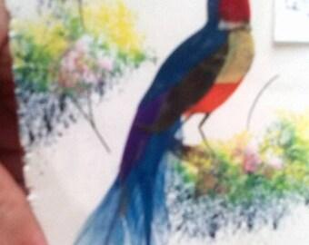 5 Vintage Handmade Feather Bird Postcards- Mexican Art