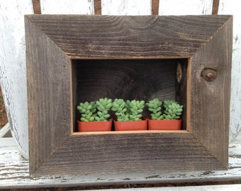 RUSTIC Wall Planter, 3 Succulents And Soil Included, Wall Pocket, Planter Box, Plant Shelf, Reclaimed Wood