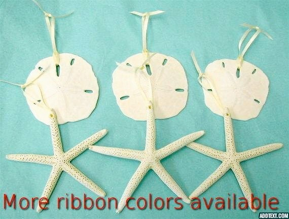"""Beach Ornaments - Set of 6 Natural Sand Dollars and Starfish - 3"""" - 5"""" - Choose from 5 Ribbons or Jute and Natural or with Clear Glitter"""