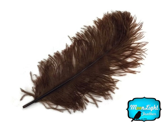 "Large Wedding Feathers, 10 Pieces - 18- 24"" BROWN Large Ostrich Wing Plumes Centerpiece Feathers : 3987"
