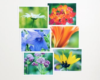 Floral Photo Note Card Pack, 6 Summer Garden Flowers Photography Note Cards boxed stationery set of six a2 blank notecards assortment