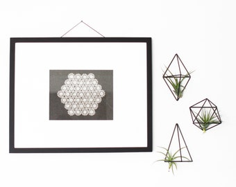 Set of 3 - Modern Geometric Ornament Collection - Himmeli