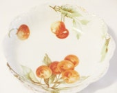 """Rosenthal Malmaison Vintage  Bavarian China Hand Painted Cherries Bowl, 6"""" Serving Bowl, by C.W. BLAKELY"""
