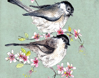 Cole Tits in Blossom Print- Illustration Painting - Watercolor Art -6x4 Print set in 8x6 mount- birds,blossom,art,painting,country,flowers