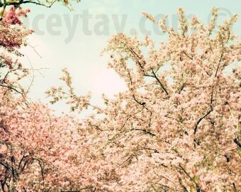 Nature Photography, Pastel Decor, Pink, Mint Blue, Girl Nursery Decor, Pastel Wall Art, Spring, Tree Branches
