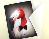 Fernando the Fantastic Flamingo - Note Card