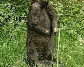 Bronzes ( marmot )
