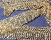 """Cruelty Free No. D3 - 19"""" Inch Albino Mister Pig Colubrid Skin Shed Natural Ethically Sourced Reptile Serpent Venomous Religious Specimen"""
