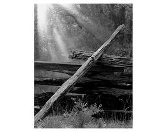 "Fine Art Black & White Landscape Photography of Old Rail Fence in Yosemite - ""Broken Fence in Morning Light"""