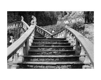 """Fine Art Black & White Architecture Photography of Villa in Tuscany - """"Stairway in the Garden at Villa Garzoni"""""""