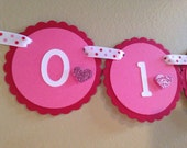 Valentine Collection: Monthly first birthday photo banner. Picture Banner. First Year Banner. Glitter pink red hearts