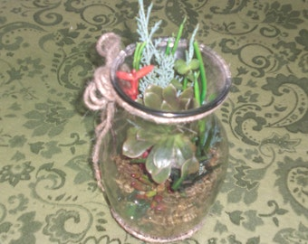 AVAILABLE NOW..living succulent terrarium