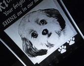 Photo Pet Illuminated Memorial - Engraved - Acrylic - Light Base Included