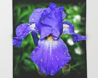 Iris Sea Master throw blanket, blue flower, summer garden, floral photograph, fleece throw, gardener mother's day gift