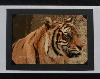 Photo Greeting Card, Orange Bengal Tiger, Blank Inside