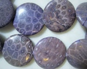 Purple Coral Fossil Beads, Large Round Semi-Precious Gemstone Button, Disk, Coin, Lentils, approx. 2mm Hole, 31mm x 8mm, 13 pcs.