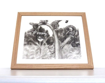 Landscape drawing , Fern with water droplets, charcoal drawing, pencil drawing, black and white, wall art, nature art, landscape art, plant