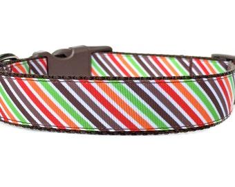 Fall Dog Collar Collar / Striped Dog Collar Dog Collar / Orange Brown Dog Collar / Nylon Webbing Dog Collar / Autumn Dog Collar