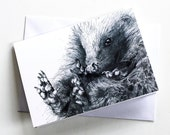 Blank Card - Curled Up Hedgehog