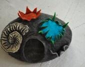 new----cat cave reef life
