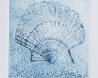 Original etching print of a scallop sea shell in blue ink