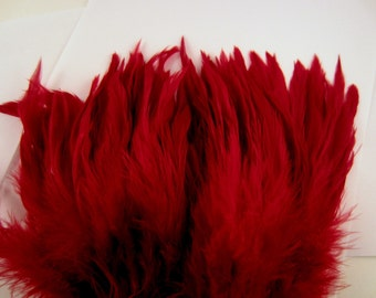 Claret feathers rooster tail feathers