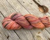 Claude, variegated sock yarn