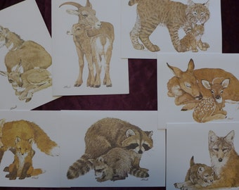 Vintage Current Wildlife Ecology Note Cards/ Fox / Deer / Bobcat / Raccoon / Wolf / Sheep / Pronghorn