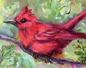 Red  bird painting original art 5 x 7
