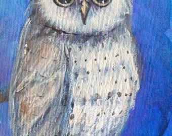 "Owl Painting bird painting original art 7 x5"""